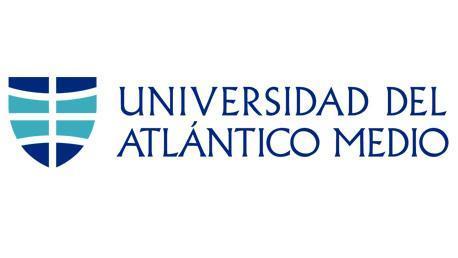 Título Universitario Superior en Diseño de Videojuegos