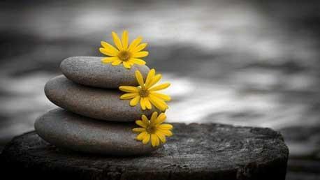 Master en Terapias de Tercera Generación: Mindfulness, Terapia de Aceptación y Compromiso, EMDR, Terapia Breve Estratégica y Terapia de Pareja