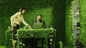 ¿Quieres un empleo? ¿Y un empleo verde?
