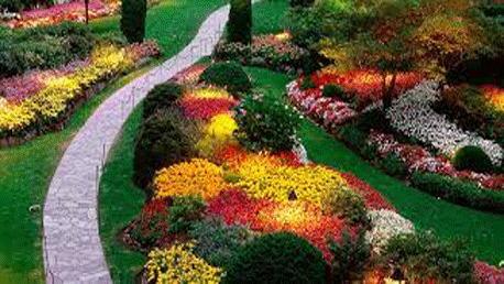 Curso Jardinería