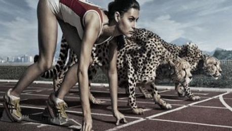 Curso Metodología y Programación del Entrenamiento de la Velocidad y Flexibilidad - Preparador Físico