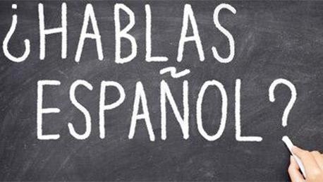 Curso Profesor de Español como Lengua Extranjera Online