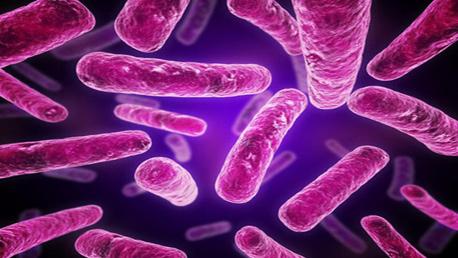 Curso Enseñanza Técnico Profesional de Técnicas en Análisis Cromosómicos y Ácidos Nucleicos