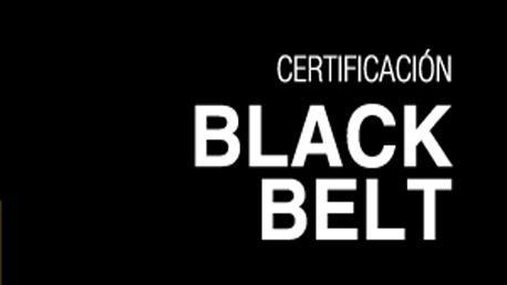 Curso Certificación Six Sigma Black Belt Lean Logistics