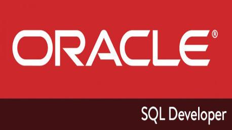 Master Certificación Oracle 11g-Java Online Combinado Online