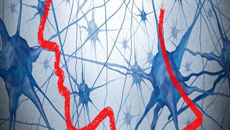 Master Neuroeducación y Optimización de Capacidades