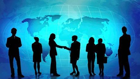 Expert International Business