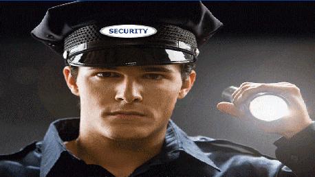 Curso Vigilante de Seguridad Privada Válido para la Obtención de la TIP