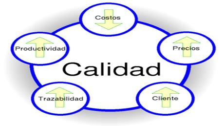 Experto Universitario en Gestión y Auditoría de Sistemas de Calidad
