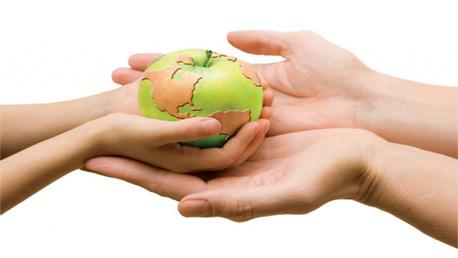 Programa Superior en Seguridad Alimentaria y Gestión de la Inocuidad