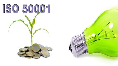 Curso Auditor Interno de Sistemas de Gestión de la Energía ISO 50001