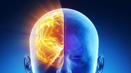 Curso Universitario en Neurologia Conductual del Desarrollo Humano