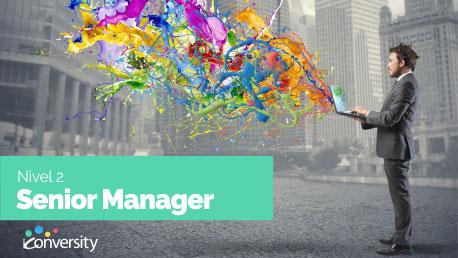 Curso Perfeccionamiento en Publicidad Digital: Google Adwords, Analytics y Conversion Senior Manager