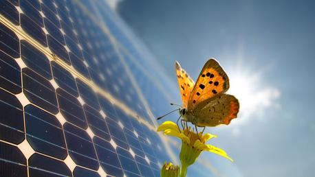 Programa Superior en Instalación de Sistemas de Energías Renovables