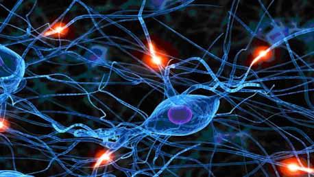 Master Neuropsicología Clínica