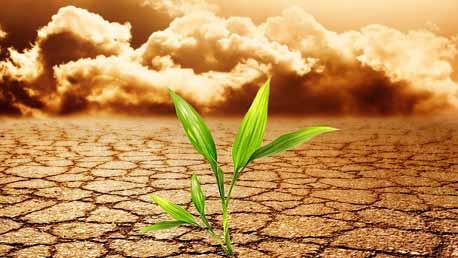 Curso Huella de Carbono y Cambio Climático