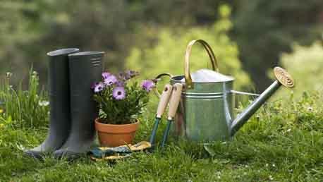 Curso jardiner a distancia delena formaci n for Estudiar jardineria
