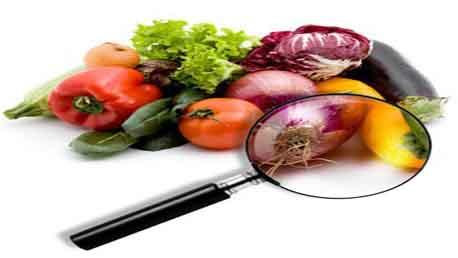 Master Calidad Alimentaria BRC v.7, IFS v.6 e ISO 22000:2005