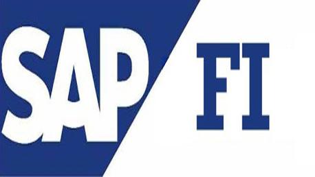 Curso Experto Usuario en SAP FI/CO: Finanzas y Presupuesto