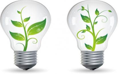 Master Europeo online en Educación Ambiental