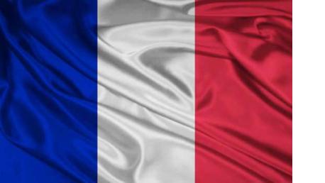 Curso online de Francés (a elegir entre 4 niveles) Principiante