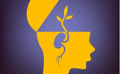 Curso online de Inteligencia emocional, el secreto del bienestar