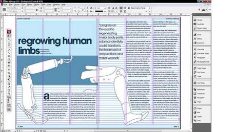 Curso online de InDesign CS6