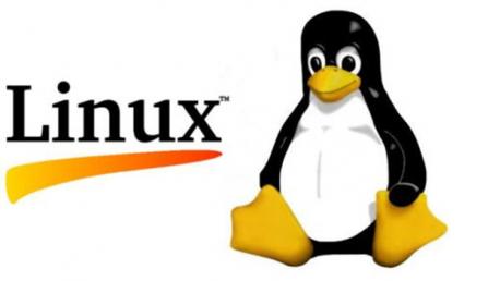 Certificación Oficial en Informática Linux LPI (nivel 1)