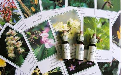 Curso online de Terapeuta en Flores de Bach