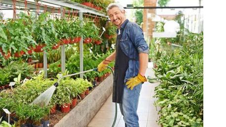 Curso online Profesional de Gestión de la Producción de Plantas y Semillas en Viveros Curso completo
