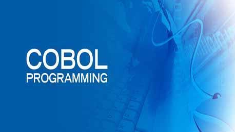 Curso Especialista en .NET, Cobol, PHP y PL/SQL - Titulo Propio UDIMA