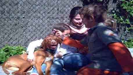 Curso Terapia Asistida con Perros - TTAP