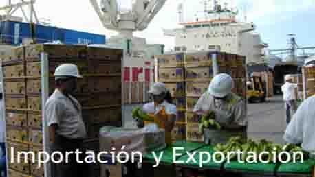 Curso Exportación e Importación de Productos Agrícolas