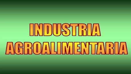 Curso Experto Online en Gestión de la Industria Agroalimentaria