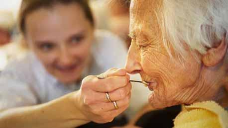 Curso Cuidados Paliativos. Envejecimiento y Final de la Vida