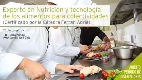 Curso Experto en Nutrición y Tecnología de los Alimentos para Colectividades