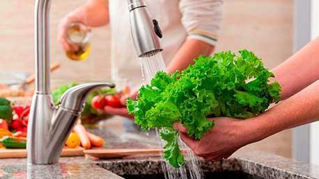 Máster Calidad, Higiene y Seguridad Alimentaria
