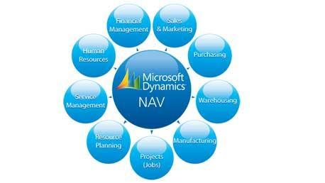 Master Microsoft Dynamics NAV ERP
