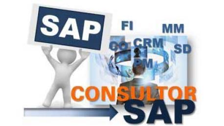 Curso SAP R/3: SAP Funcional - Usuario