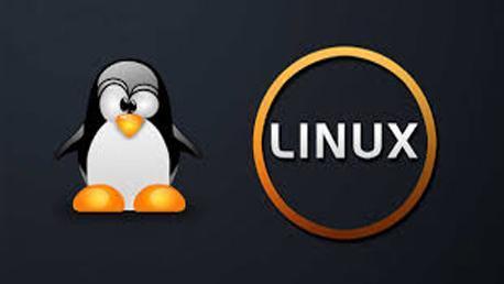 Curso LPIC 1 & 2 - Administrador Redes Linux