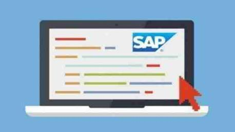 Curso SAP Usuario (FI, MM, SD, HCM)