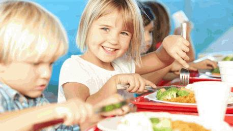 Curso de Monitor de Comedor Escolar + Titulación Certificada