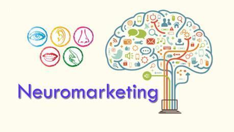 Curso Experto en Marketing y Neuromarketing