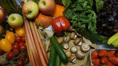 Master en Nutrición Humana y Dietética