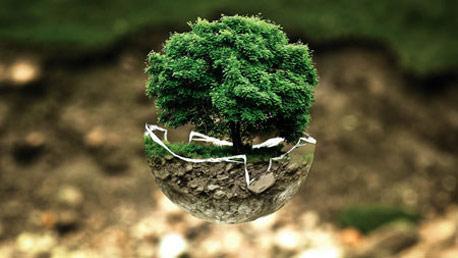 Master en Calidad y Gestión Medioambiental