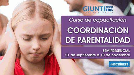Curso Capacitación en Coordinador de Parentalidad