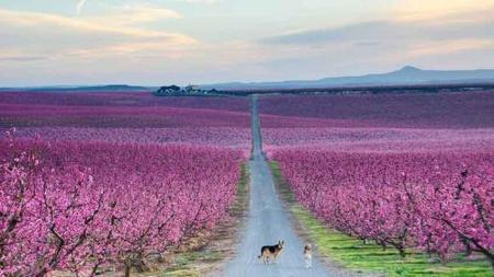Ha llegado la primavera, también para el empleo en España