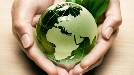 Curso Experto en Gestion para la Proteccion Medioambiental