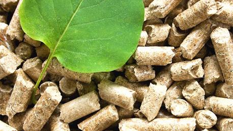 Curso Superior en Energía de la Biomasa, del Agua y Eficiencia Energética