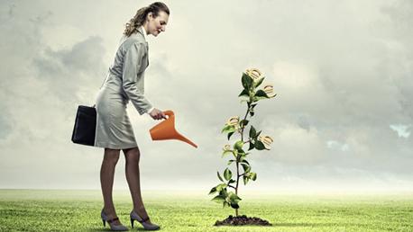 Curso Superior en Sistemas de Gestión Ambiental